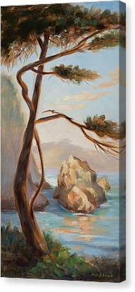 Whalers Cove Canvas Print - Graceful Pine In Afternoon Light At Point Lobos by Karin  Leonard