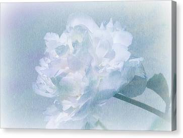 Gracefully Canvas Print by Barbara S Nickerson
