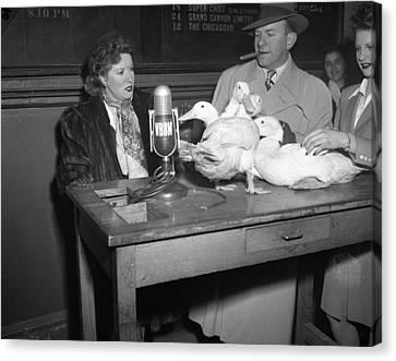 Gracie Allen Interviews The Ducks Canvas Print by Retro Images Archive