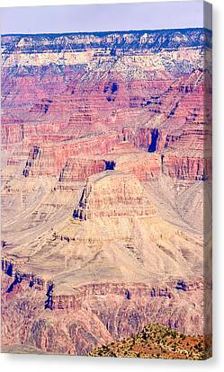 Gran Canyon 32 Canvas Print by Douglas Barnett