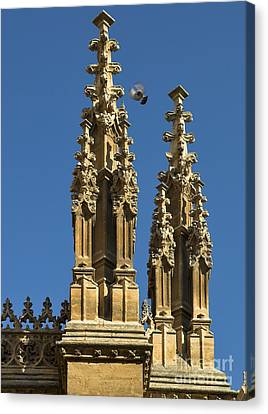 Cities Canvas Print - Granada Cathedral Details by Guido Montanes Castillo