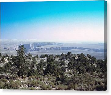 Canvas Print featuring the photograph Grand Canyon 1972 by John Mathews