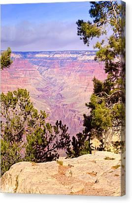 Grand Canyon 37 Canvas Print by Douglas Barnett