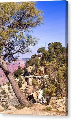 Grand Canyon 40 Canvas Print by Douglas Barnett