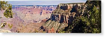 Grand Canyon 50 Canvas Print by Douglas Barnett