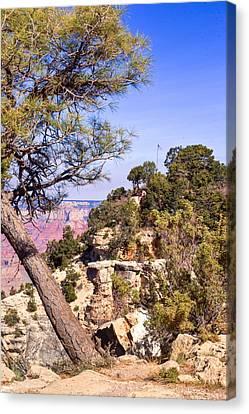Grand Canyon 52 Canvas Print by Douglas Barnett
