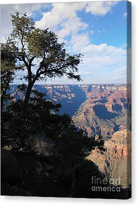 Grand Canyon Afternoon Canvas Print by Stu Shepherd