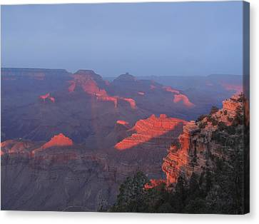Grand Canyon At Sunset Canvas Print by Jayne Wilson