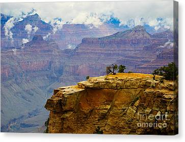Canvas Print - Grand Canyon Clearing Storm by Terry Garvin