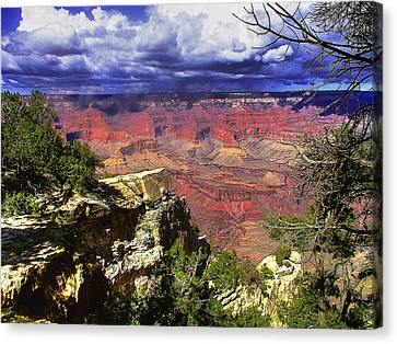 Canvas Print featuring the photograph Grand Canyon by Craig T Burgwardt