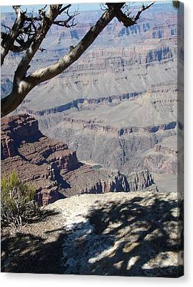 Canvas Print featuring the photograph Grand Canyon by David S Reynolds