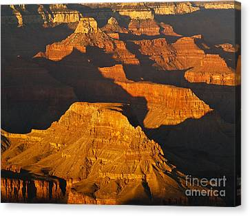 Grand Canyon Glow Canvas Print by Alex Cassels