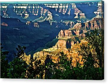 Canvas Print featuring the photograph Grand Canyon  Golden Hour On Angel Point by Bob and Nadine Johnston