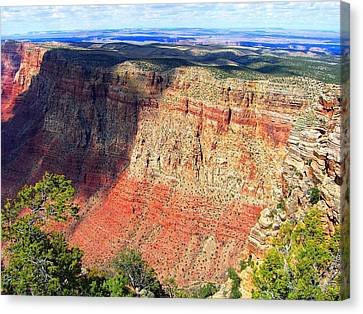 Grand Canyon Canvas Print by Julia Ivanovna Willhite