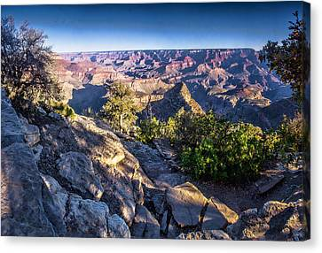 Grand Canyon Morning Canvas Print by Daniel Hebard
