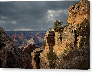 Grand Canyon National Park, Bright Canvas Print by Ed Freeman