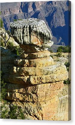 Grand Canyon National Park Cap Rock Vertical Canvas Print by Shawn O'Brien