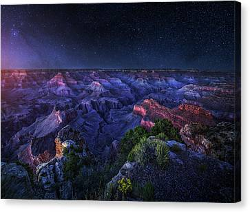 Grand Canyon Night Canvas Print by Juan Pablo De