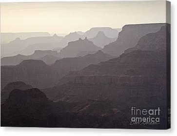 Grand Canyon No. 3 Canvas Print by David Gordon
