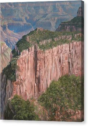 Grand Canyon North Rim Canvas Print by David Stribbling
