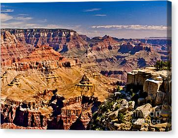 Grand Canyon Painting Canvas Print by Bob and Nadine Johnston