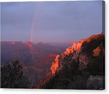 Grand Canyon Rainbow Canvas Print by Jayne Wilson