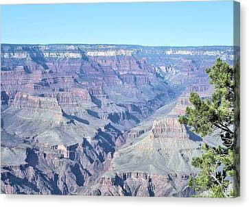 Grand Canyon South Canvas Print