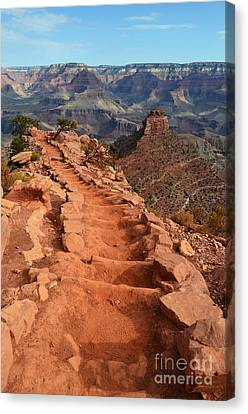 Grand Canyon South Kaibab Trail And Oneill Butte Vertical Canvas Print by Shawn O'Brien