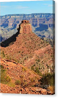Grand Canyon Canvas Print - Grand Canyon South Kaibab Trail Overlooking Cedar Ridge And Oneill Butte Vertical by Shawn O'Brien