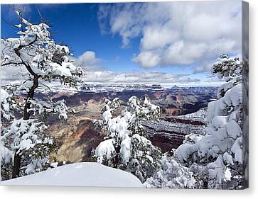 Grand Canyon Winter - 1 Canvas Print