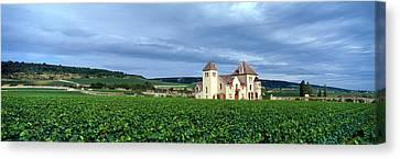Grand Cru Vineyard, Burgundy, France Canvas Print