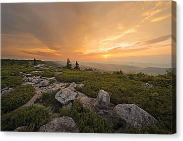 Canvas Print featuring the photograph Grand Finale by Bernard Chen
