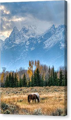 Grand Landscape  Canvas Print