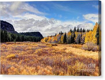 Grand Mesa Colors Canvas Print by Bob Hislop