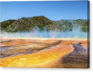 Grand Prismatic Spring - Yellowstone National Park Canvas Print by Brian Harig
