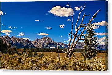 Grand Tenton Overlook Canvas Print by Robert Bales