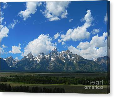 Canvas Print featuring the photograph Grand Teton National Park by Janice Westerberg