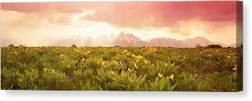 Grand Teton Park, Wyoming, Usa Canvas Print by Panoramic Images