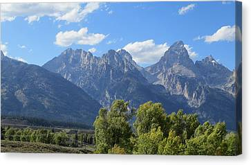Grand Tetons Canvas Print by Diane Mitchell
