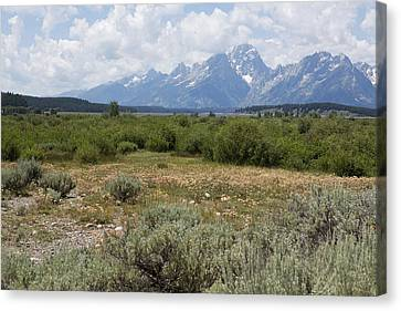 Grand Tetons From Willow Flats Canvas Print by Belinda Greb