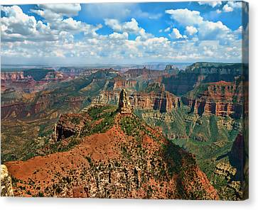Grande Canvas Print by Lanis Rossi