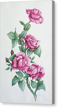 Canvas Print featuring the painting Grandma Helen's Roses by Katherine Young-Beck