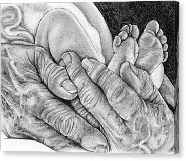 Canvas Print featuring the drawing Grandmother's Hands by Penny Collins