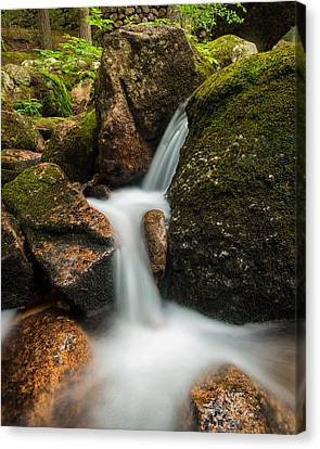 Granite Cascade Canvas Print by Michael Blanchette
