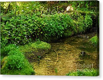 Canvas Print featuring the photograph Granite Creek by Sam Rosen