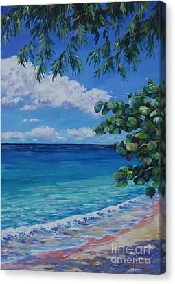 Grape Tree On 7-mile Beach Canvas Print by John Clark