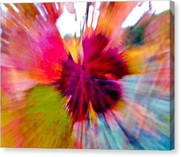 Grape Vine Burst Canvas Print by Bill Gallagher