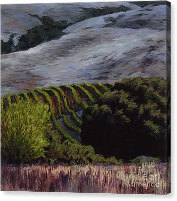 Grapes And Oaks Canvas Print by Betsee  Talavera