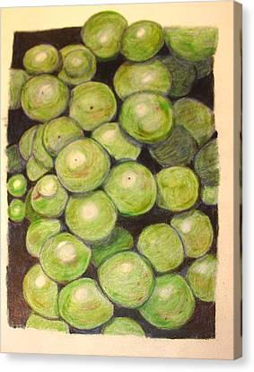 Grapes In Progress Canvas Print by Joseph Hawkins
