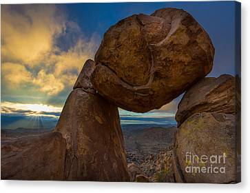 Grapevine Hills Canvas Print by Inge Johnsson